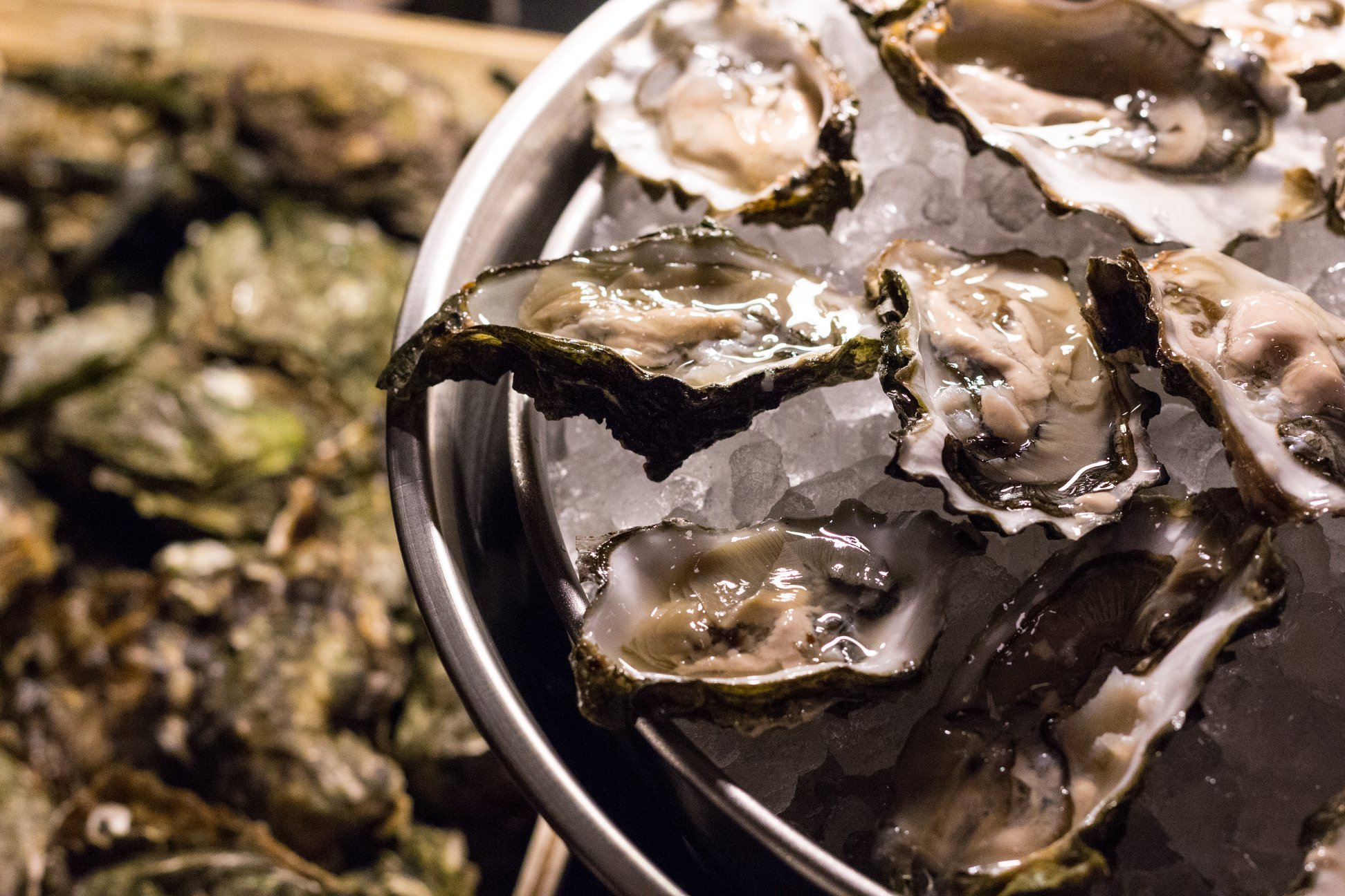 oesters wijnhuis
